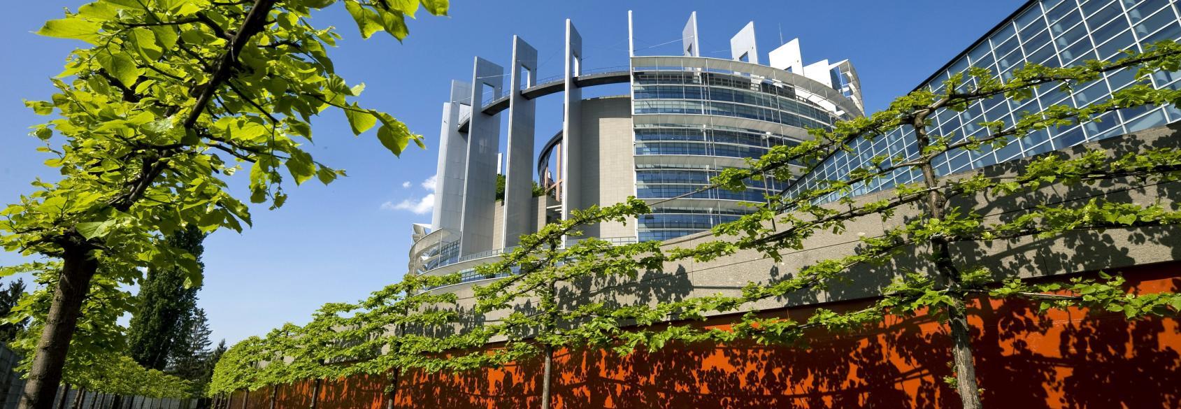 Entretien des espaces verts scop espaces verts for Espace vert urbain