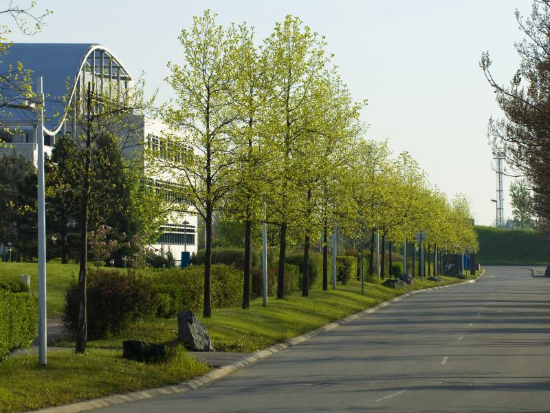 Nos r alisations scop espaces verts am nagement et for Espace vert lotissement